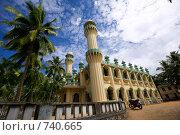 Купить «Мусульманская мечеть среди кокосовых пальм», фото № 740665, снято 8 января 2009 г. (c) Гараев Александр / Фотобанк Лори