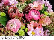 Купить «Цветы», фото № 740805, снято 9 марта 2009 г. (c) Криволап Ольга / Фотобанк Лори