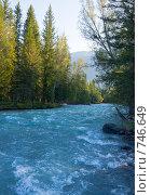 Купить «Широкая горная река, горный Алтай», фото № 746649, снято 18 июля 2008 г. (c) Max Toporsky / Фотобанк Лори