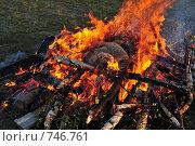 Шкура разделанного барана в качестве жертвоприношения богам. Стоковое фото, фотограф Игнатьев Михаил / Фотобанк Лори