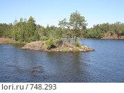 Купить «Остров Валаам», фото № 748293, снято 10 августа 2008 г. (c) Parmenov Pavel / Фотобанк Лори