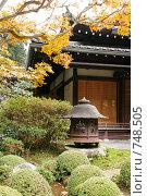 Сад храма Дзяккоин. Охара, Япония (2007 год). Стоковое фото, фотограф Просенкова Светлана / Фотобанк Лори