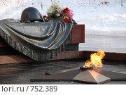 Купить «Вечный огонь, могила Неизвестного солдата, Москва», фото № 752389, снято 21 февраля 2009 г. (c) Криволап Ольга / Фотобанк Лори