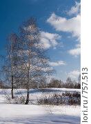 Купить «Зимний пейзаж», фото № 757513, снято 14 марта 2009 г. (c) Юрий Бельмесов / Фотобанк Лори