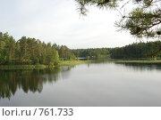 Купить «Светлое озеро», фото № 761733, снято 19 июля 2008 г. (c) Таисия Черемных / Фотобанк Лори