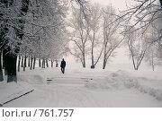 Зима.. Стоковое фото, фотограф Афанасьева Екатерина / Фотобанк Лори