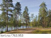 Лесное озеро. Стоковое фото, фотограф Виталий Фурсов / Фотобанк Лори