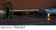 Москва. У Вечного огня (2009 год). Редакционное фото, фотограф Литвинов Алексей / Фотобанк Лори