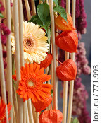 Купить «Цветочная декорация», фото № 771993, снято 22 сентября 2007 г. (c) Ольга Харламова / Фотобанк Лори