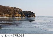 Купить «Весеннее таяние льда», фото № 778081, снято 28 февраля 2009 г. (c) Елена Климовская / Фотобанк Лори