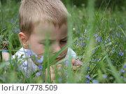 Купить «Мальчик в траве», фото № 778509, снято 4 июня 2006 г. (c) Losevsky Pavel / Фотобанк Лори