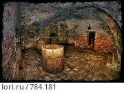 Купить «Камера пыток», иллюстрация № 784181 (c) Евгений Шелковников / Фотобанк Лори