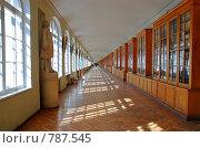 Купить «Знаменитый коридор Санкт-Петербургского государственного университета», фото № 787545, снято 2 апреля 2009 г. (c) Елена Галачьянц / Фотобанк Лори