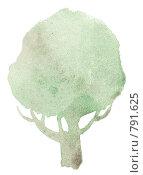 Купить «Лиственное дерево. Акварель», иллюстрация № 791625 (c) Анастасия Малик / Фотобанк Лори