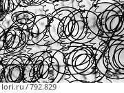 Купить «Пружины старого матраца (чб)», фото № 792829, снято 17 апреля 2008 г. (c) Петухов Геннадий / Фотобанк Лори