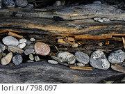 Купить «Дерево и камни», фото № 798097, снято 15 августа 2018 г. (c) Евгений Шелковников / Фотобанк Лори