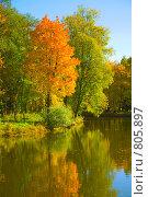 Осень, фото № 805897, снято 27 сентября 2008 г. (c) Валентин Мосичев / Фотобанк Лори