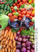Купить «Свежие овощи, фон», фото № 811513, снято 20 июля 2019 г. (c) Losevsky Pavel / Фотобанк Лори