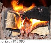 Купить «Огонь в печи», фото № 813993, снято 5 апреля 2009 г. (c) sav / Фотобанк Лори
