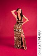 Купить «Сексуальная брюнетка в вечернем платье», фото № 814493, снято 25 февраля 2009 г. (c) Олег Тыщенко / Фотобанк Лори