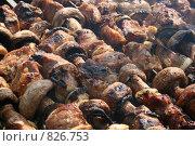 Купить «Пикник», фото № 826753, снято 19 апреля 2009 г. (c) Робул Дмитрий / Фотобанк Лори