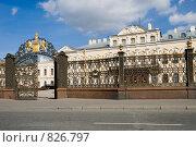 Купить «Ограда и ворота Шереметевского дворца. Санкт-Петербург», эксклюзивное фото № 826797, снято 21 апреля 2009 г. (c) Александр Щепин / Фотобанк Лори