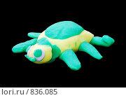 Купить «Пластилиновая черепаха», фото № 836085, снято 17 октября 2018 г. (c) Парушин Евгений / Фотобанк Лори