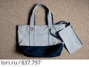 Купить «Женская сумка», фото № 837797, снято 26 марта 2020 г. (c) Илюхин Илья / Фотобанк Лори