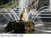 Самсон. Редакционное фото, фотограф Вадим / Фотобанк Лори