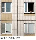 Городской загар. Стоковое фото, фотограф Александр Зайцев / Фотобанк Лори