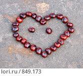 Купить «Сердце из каштанов», фото № 849173, снято 11 октября 2008 г. (c) Юлия Подгорная / Фотобанк Лори