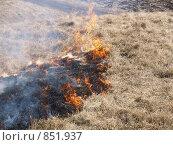 Огонь на сухой траве. Стоковое фото, фотограф Вячеслав Углов / Фотобанк Лори