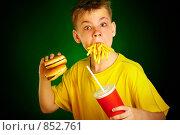 Купить «Мальчик, поедающий фастфуд», фото № 852761, снято 5 мая 2009 г. (c) Андрей Армягов / Фотобанк Лори