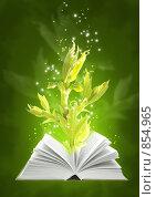 Купить «Книга магии Земли», иллюстрация № 854965 (c) Лукиянова Наталья / Фотобанк Лори