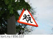 Дорожный знак. Стоковое фото, фотограф Денис Собкалов / Фотобанк Лори