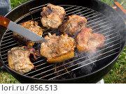 Купить «Приготовление мяса на гриле», фото № 856513, снято 9 мая 2009 г. (c) Миняева Ольга / Фотобанк Лори