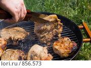 Купить «Приготовление мяса на гриле», фото № 856573, снято 9 мая 2009 г. (c) Миняева Ольга / Фотобанк Лори