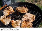 Купить «Приготовление мяса на гриле», фото № 858957, снято 9 мая 2009 г. (c) Миняева Ольга / Фотобанк Лори