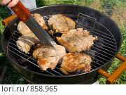 Купить «Приготовление мяса на гриле», фото № 858965, снято 11 мая 2009 г. (c) Миняева Ольга / Фотобанк Лори