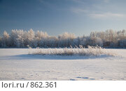 Купить «Зимний пейзаж», фото № 862361, снято 6 января 2009 г. (c) Юрий Егоров / Фотобанк Лори
