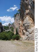 Купить «Крым, Никита», фото № 870529, снято 31 июля 2008 г. (c) Смыгина Татьяна / Фотобанк Лори