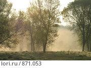 Холодное  утро. Стоковое фото, фотограф Муравьев Андрей / Фотобанк Лори