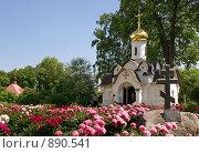 Купить «Дмитров. Борисоглебский монастырь.Часовня Святого Духа», фото № 890541, снято 21 июня 2008 г. (c) Julia Nelson / Фотобанк Лори