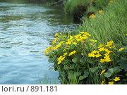 Речной пейзаж. Стоковое фото, фотограф Омельян Светлана / Фотобанк Лори