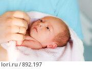 Купить «Новорожденный в руках врача», фото № 892197, снято 17 июля 2008 г. (c) Алена Роот / Фотобанк Лори
