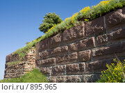 Старая стена. Стоковое фото, фотограф Виктор Мухин / Фотобанк Лори