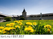 Купить «Башня Псковского Кремля», фото № 897857, снято 17 мая 2008 г. (c) Бутинова Елена / Фотобанк Лори