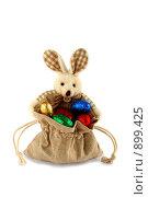 Купить «Пасхальный зайчик», фото № 899425, снято 8 апреля 2009 г. (c) Nikolaj Kondratenko / Фотобанк Лори