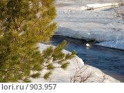 Весенний ручей. Стоковое фото, фотограф Шумский Вадим / Фотобанк Лори