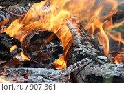 Пламя. Стоковое фото, фотограф Дмитрий Левченко / Фотобанк Лори